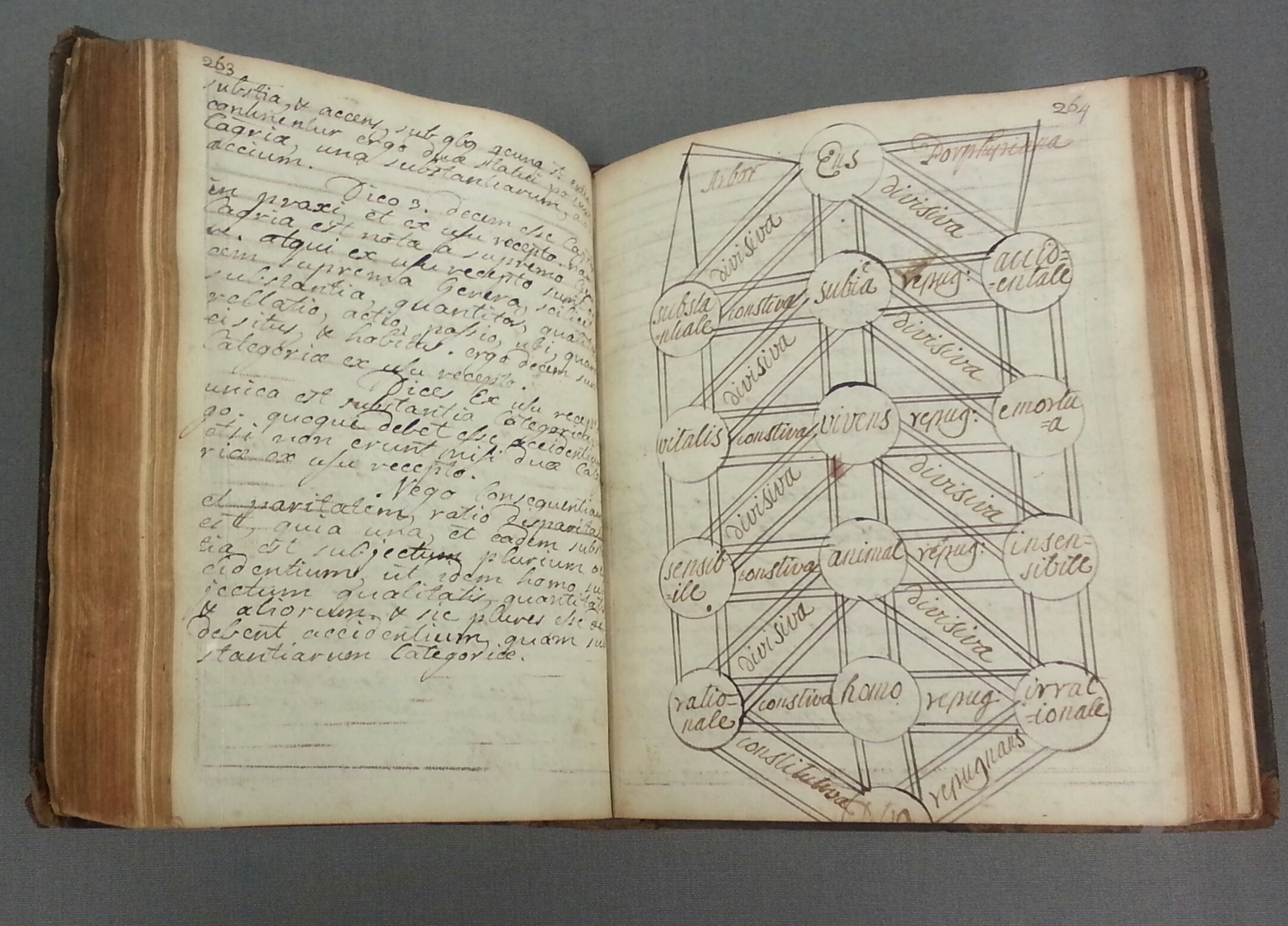 Maynooth Notebook