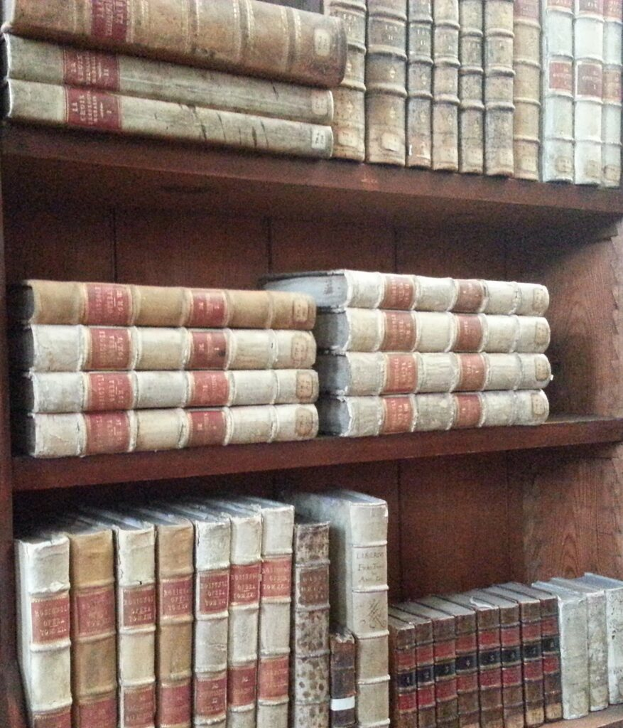 Bookshelves in the Russell Library, Maynooth (c) Irish Philosophy (CC BY 2.0)